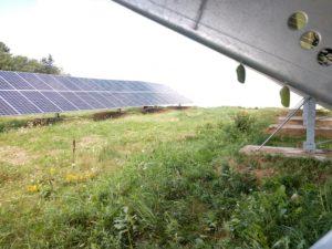 community solar energy